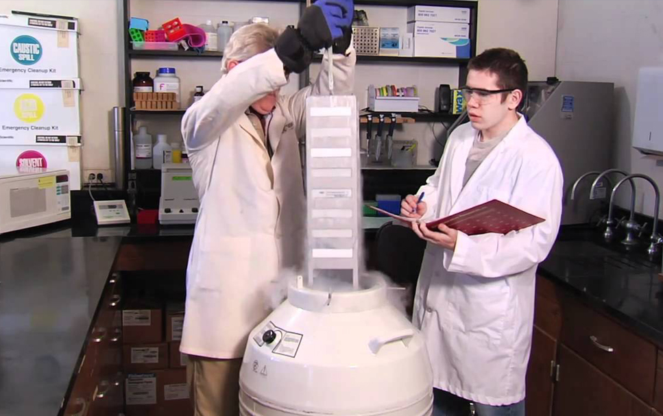 Student assists a professor in a lab