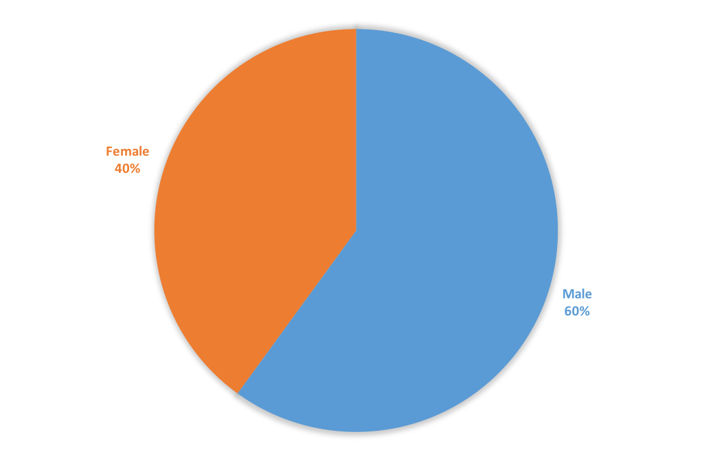 blue and orange pie chart displaying the percentage of female and male students in the proram